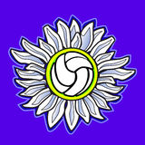 Volleyball flower vector image. Vector Image of Flower Volleyball Royalty Free Stock Photography