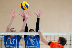 Volleyball game Royalty Free Stock Photo