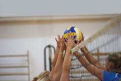 Volleyball Stock Photos