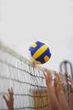 Volleyball Royalty Free Stock Image