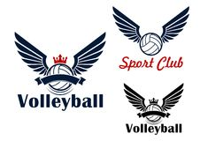 Volleyball game symbol with winged balls Stock Photos