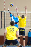Volleyball game. Ukrainian super league Royalty Free Stock Photos