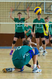 Volleyball game Royalty Free Stock Images