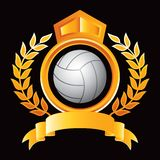 Volleyball in gold royal crest Royalty Free Stock Photos