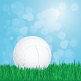 Volleyball on grass Royalty Free Stock Images