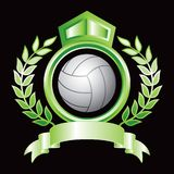 Volleyball in green royal crest Royalty Free Stock Images