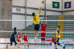 Volleyball. Group of male athletes engaged in a game of volleyball royalty free stock photo