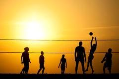 Volleyball. Group of young people igoat in volleyball on the sea coast stock photo