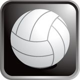 Volleyball icon. Web icon of a volleyball Royalty Free Stock Photography