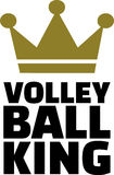 Volleyball King Royalty Free Stock Photos