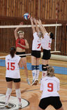 VOLLEYBALL MATCH Royalty Free Stock Image