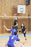 Volleyball match Stock Photos