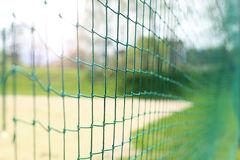 Free Volleyball Net Stock Photography - 70206962