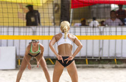 Volleyball Player Royalty Free Stock Photo