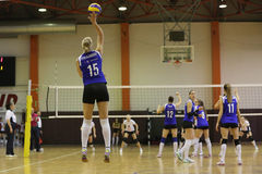 Volleyball player serves the ball Royalty Free Stock Image