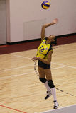 Volleyball player serves the ball Stock Image