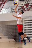 Volleyball player serves the ball. Volleyball player pictured in action during the Romanian League One game between Dinamo Bucharest and LPS Piatra Neamt. Dinamo Stock Images