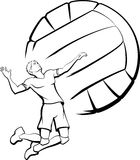 Volleyball Player Spiking Stock Image