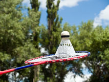 Volleyball racket ready to play Royalty Free Stock Photo