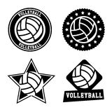 Volleyball seals Stock Photos