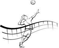 Volleyball Spike with Flowing Net Male Stock Photo