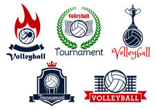 Volleyball sport game icons and symbols Royalty Free Stock Image