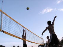 Volleyball at sunset twilight. Guys having a game of volley at dusk Royalty Free Stock Photos