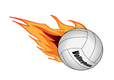 Volleyball. Vector illustration graphic Volleyball  Equipment Sports Stock Images