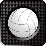 Volleyball web button Stock Image