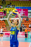 Volleyball World Grand Prix 2014 Royalty Free Stock Photo