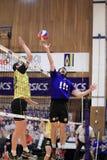 Volleyball - Zdenek Hanik Stock Photography