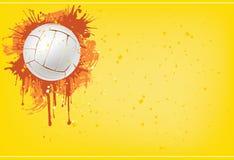 Volleyballkugel Stockbilder