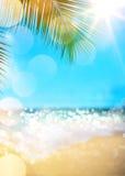 Volleyballkugel auf leerem schönem Strand stockfotos