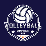 Volleyballlogo, Amerika-Logo Stockfotografie