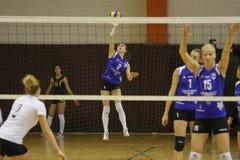 Volleyballspieler dient den Ball Lizenzfreie Stockfotografie