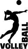 Volleyballword met speler Royalty-vrije Stock Afbeeldingen