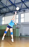 Volleyboll Royaltyfria Foton