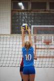 volleyboll arkivbild