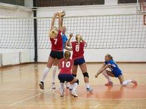 volleyboll Arkivfoto