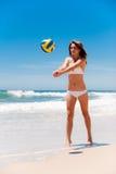 volleyboll Royaltyfri Foto