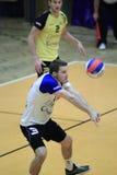 Volleyboll - Daniel Pfeffer Royaltyfri Fotografi