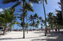 Volleyboll på den tropiska stranden Royaltyfria Bilder