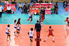 Volleyboll WGP: Dominikan VS Thailand Arkivfoto
