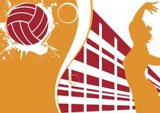 Volleybollbaner Arkivbilder