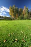 Vollkommene Herbstlandschaft Stockbild