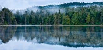 Vollkommene Reflexion des nebelhaften Waldes im See Lizenzfreie Stockfotos