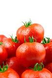 Vollkommene Tomaten mit Tropfen des Wassers Stockbilder