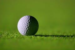 Vollkommener Golfball Stockfoto