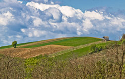 Vollkommener grüner Hügel mit Weinberg und Hütte Lizenzfreies Stockbild