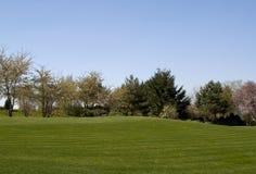 Vollkommener Rasen Stockfoto
